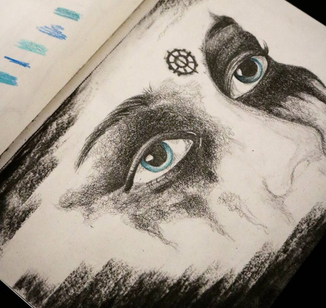 heda lexa drawing